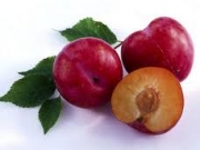 Unit 9: I like plums !